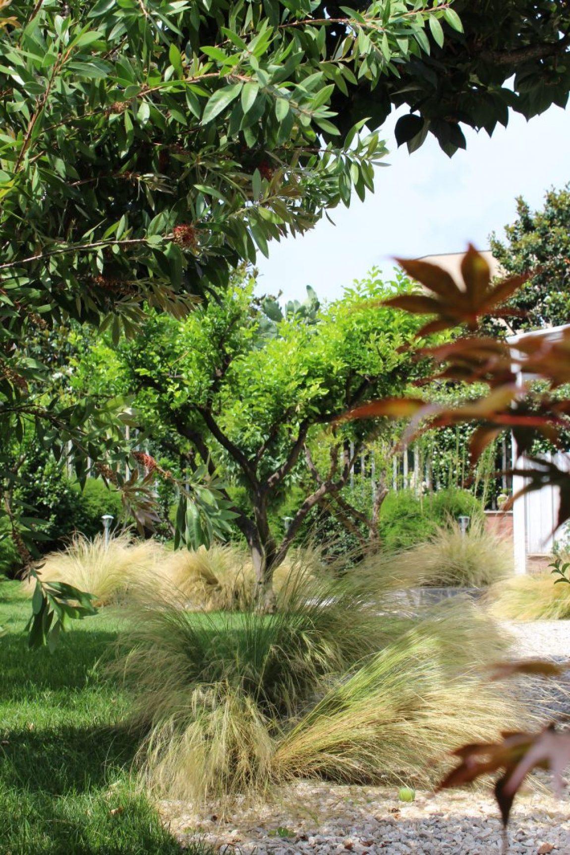 Giardino Giapponese a Roma – Sd Studio ArchitetturaIMG_4798