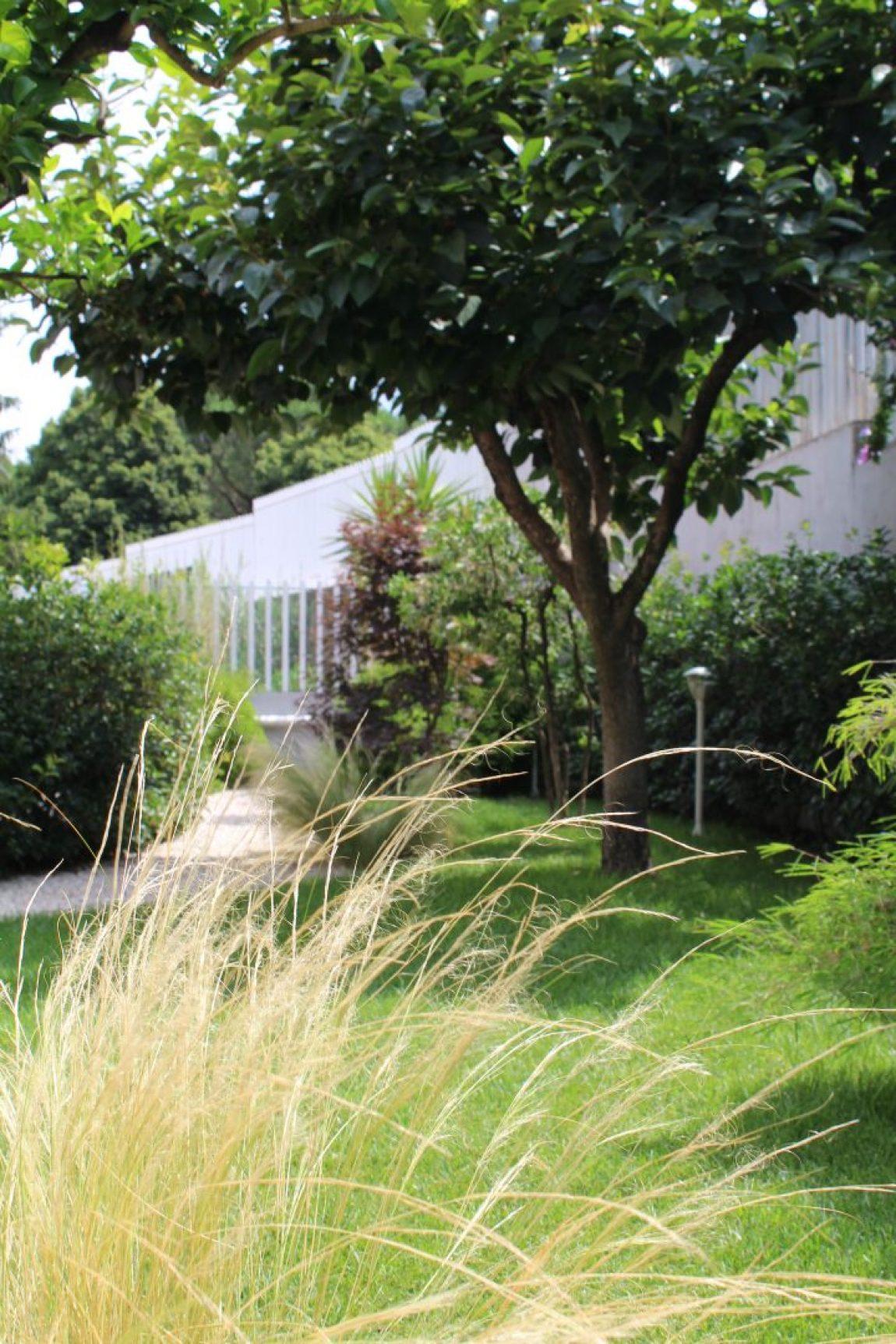 Giardino Giapponese a Roma – Sd Studio ArchitetturaIMG_4817