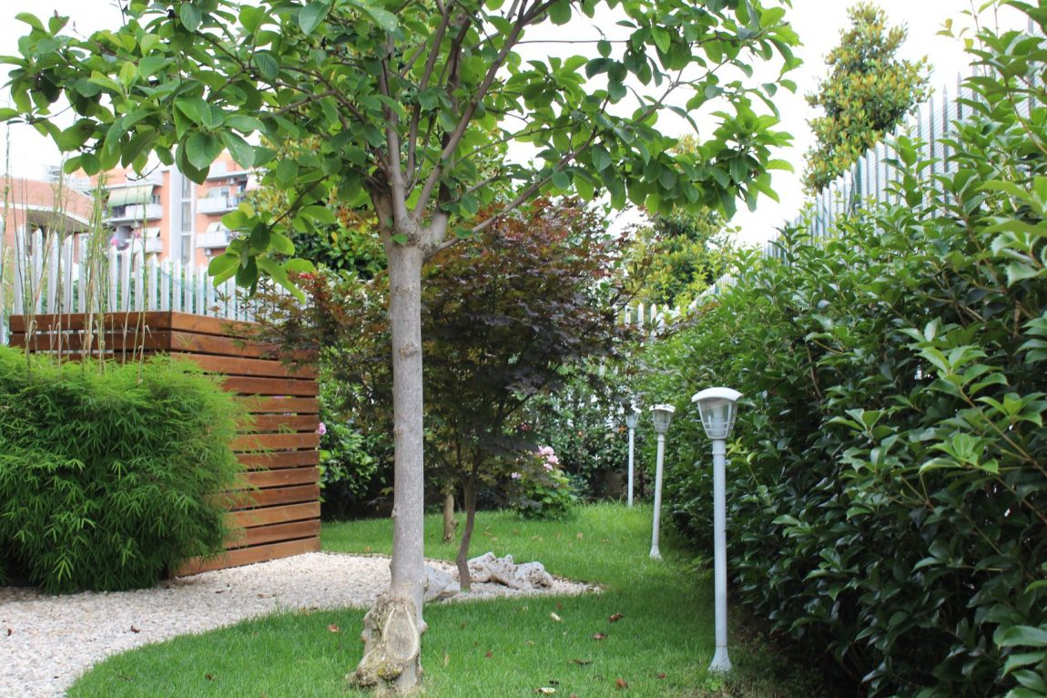 Giardino Giapponese a Roma – Sd Studio ArchitetturaIMG_4823