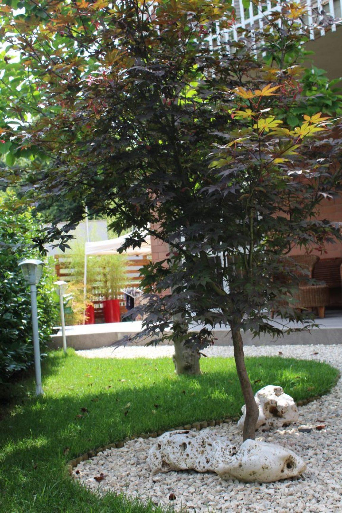 Giardino Giapponese a Roma – Sd Studio Architettura IMG_4828