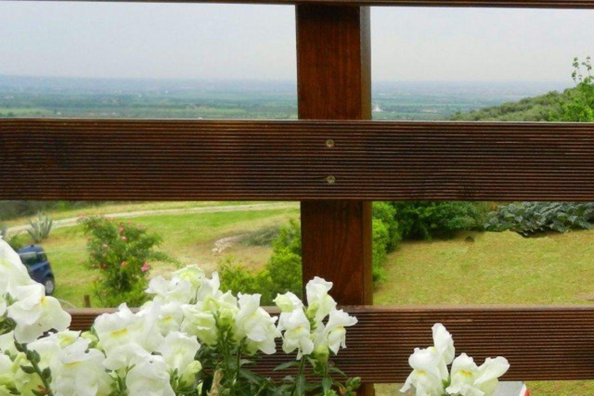 faidate-sabrina-stefano-recinzione2-640×842